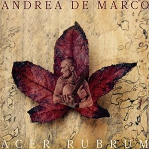 andreademarcocover[579]